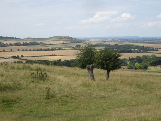 view from Whipsnade Zoo